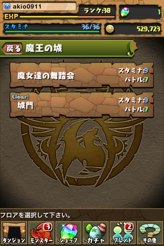 IMG 3248