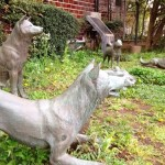 中野にある、徳川綱吉が造らせた犬屋敷跡に行ってきた