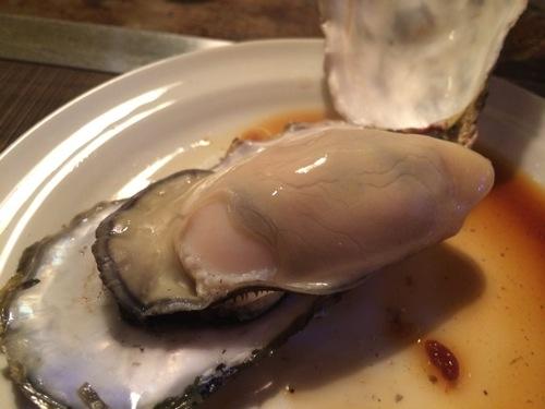 oyster-20131203-142031.jpg